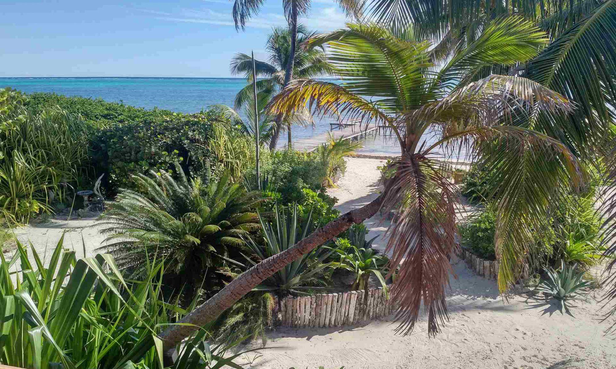 Coastal Breezes in Belize